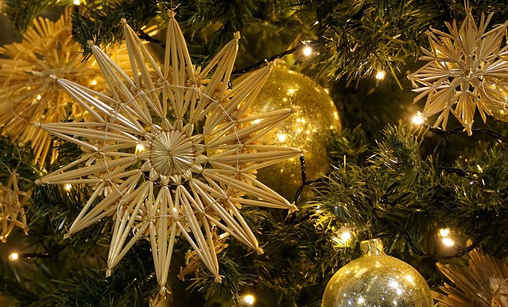 Weihnachten Am 6 Januar.Weihnachtspause Bis 6 Januar 2019 Blaue Narzisse